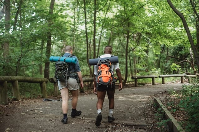 Men on a forest hiking together.